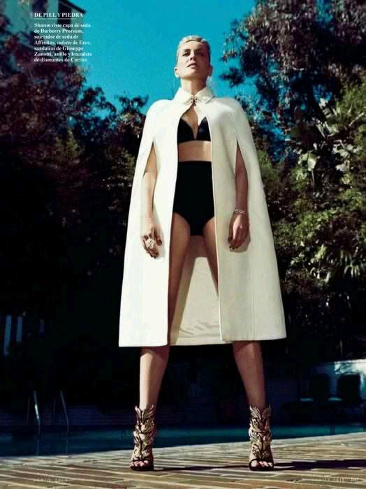 Sharon Stone | Шэрон Стоун - Страница 5 Ac75e33d0117