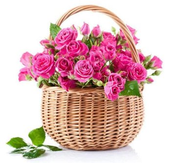 Поздравляем с Днем Рождения Ольгу (ОлиВия) 9b1bdbc1cb12t