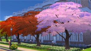 Растительность (кусты, деревья, камни) Ee514bb48276