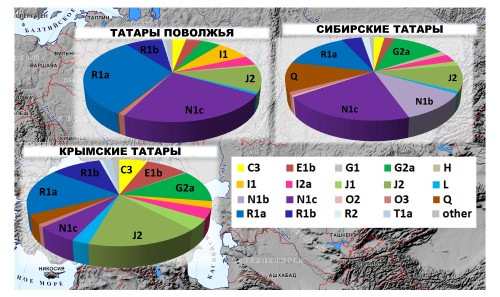 ДНК данные татар. F99fb44838e7