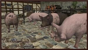 Животные (скульптуры) - Страница 4 2abe03d62849