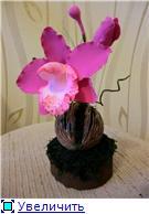 Цветы ручной работы из полимерной глины Eea86433da6at
