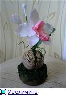 Цветы ручной работы из полимерной глины 8edc271552fbt