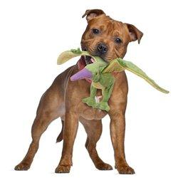 Интернет-зоомагазин Pet Gear - Страница 3 E5d4211c55ac