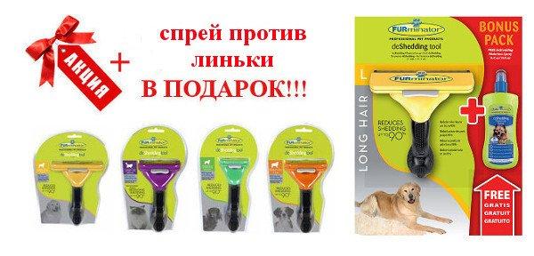 Интернет-магазин Red Dog- только качественные товары для собак! - Страница 3 93157233a9ca