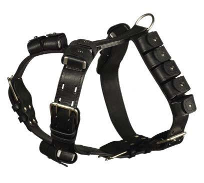 Интернет-магазин Red Dog- только качественные товары для собак! - Страница 3 1cda248ebeb9