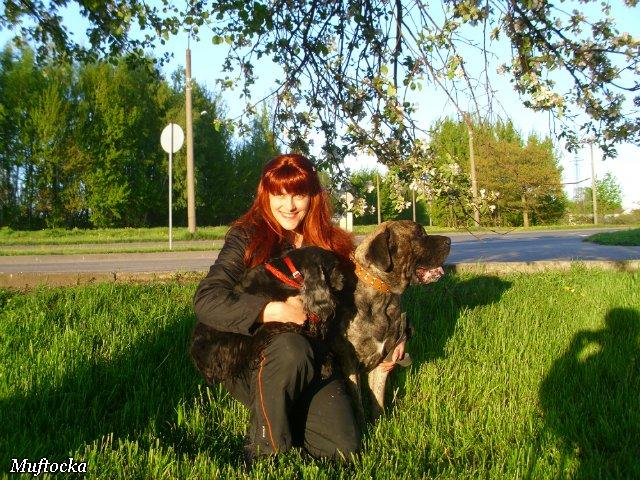 Собаки Татьяны Моисеенковой, кот Мензурка - Страница 4 62d8042c4ca3