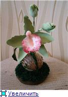 Цветы ручной работы из полимерной глины D0af7d346514t