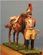 VID soldiers - Napoleonic french army sets 9064e828c6bat