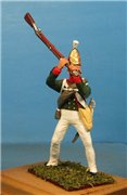 VID soldiers - Napoleonic russian army sets 6f176526cbe2t