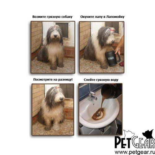 Интернет-зоомагазин Pet Gear - Страница 9 2b5a67dd8dfa
