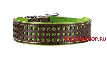 Интернет-зоомагазин Red Dog: только качественные товары для собак и кошек! 5ff949c6290a