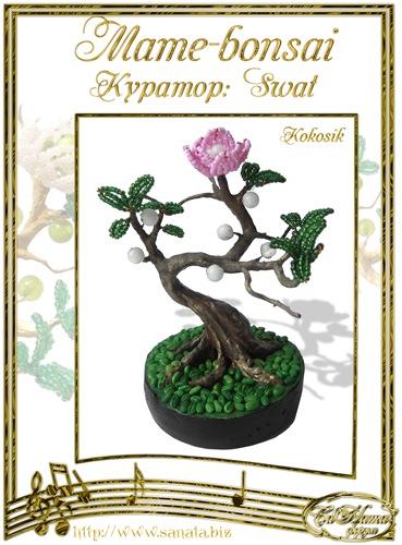 """Галерея """"Mame-bonsai"""" F89a265d2995t"""