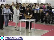 """ЕВРАЗИЯ-2012"" 4e03c94fb2f7t"