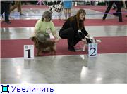 ЕВРАЗИЯ - 2012 659babbaf212t
