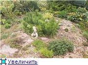 Cад Людмилы Ивановой из черкасс E5fd59f4b6bat
