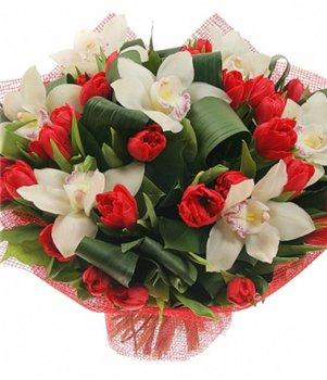 Поздравляем с Днем Рождения Ольгу (Ольга 1111) Cb427d37dde7t