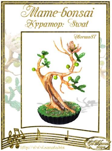"""Галерея """"Mame-bonsai"""" 4da501178185t"""