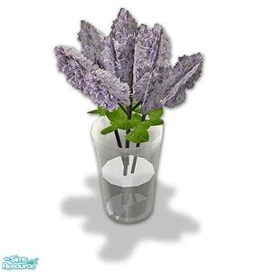 Цветы для дома - Страница 5 0b5d60df547b