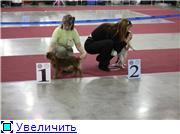"""""""ЕВРАЗИЯ-2012"""" 8bd14718576dt"""