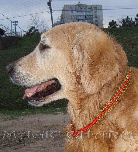MAGIC CHARM - обереги, ошейники, украшения, ринговки и другие аксессуары для  собак и кошек. 52cef1f08671