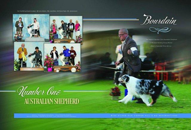 Westminster Show - Страница 2 F1b805618765