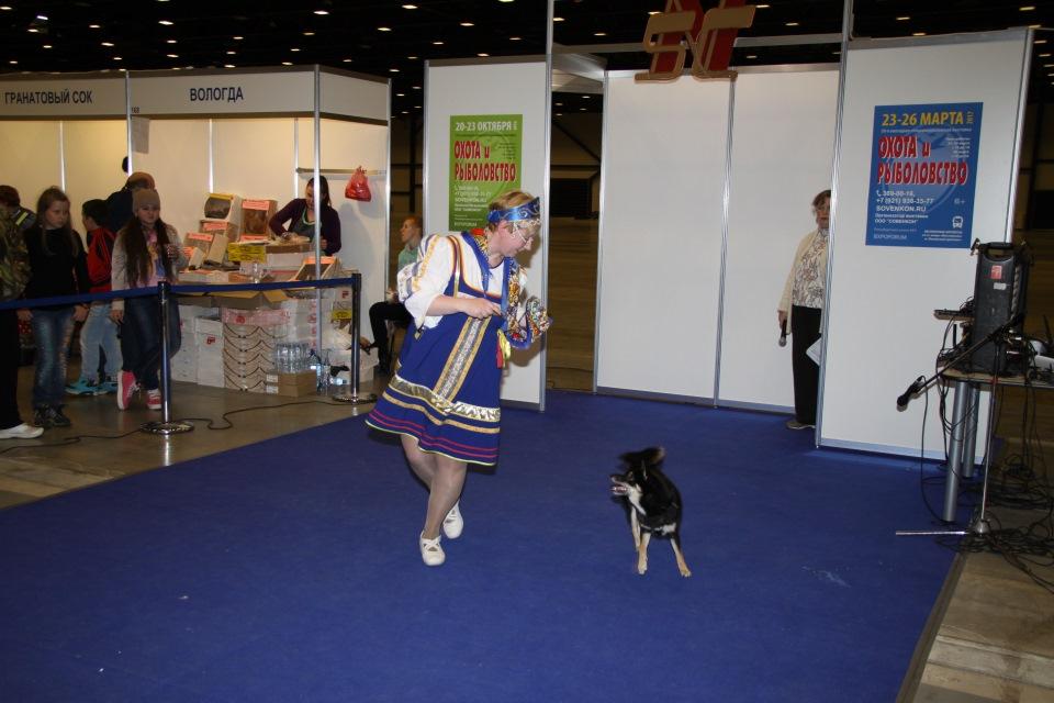 Танцы с собаками - Страница 3 C45d53a492db
