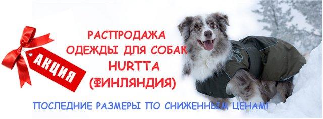 Интернет-зоомагазин Red Dog: только качественные товары для  - Страница 3 993738f5b7b7