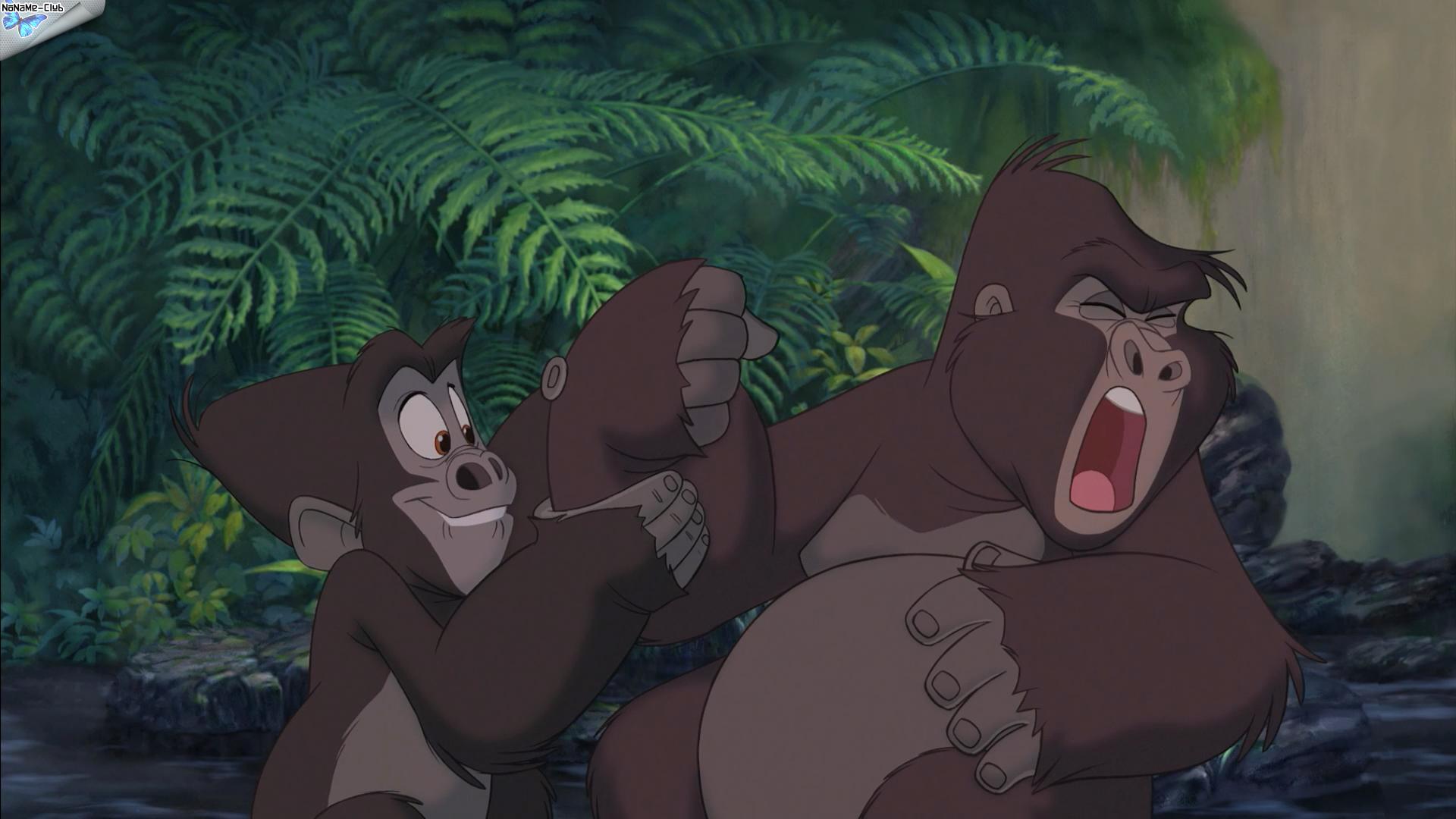 [BD] Tarzan (6 juin 2012) - Page 3 06bd0737aa45