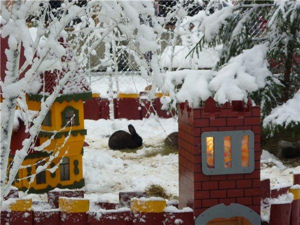 Зимняя сказка на наших фотографиях - Страница 6 8df14bdcdfac