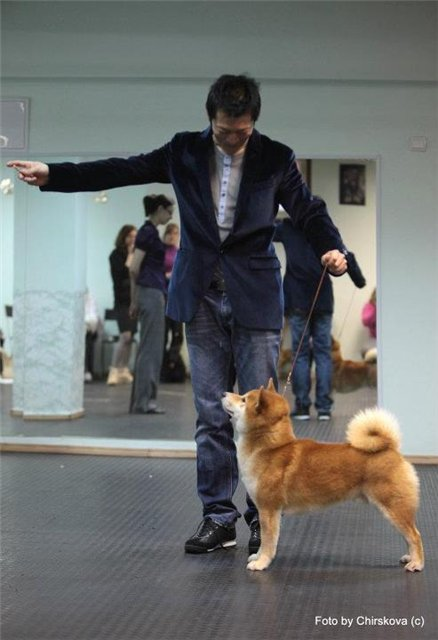 Профессиональный мастер-класс по хендленгу Тошинори Омура 8f736033fc49