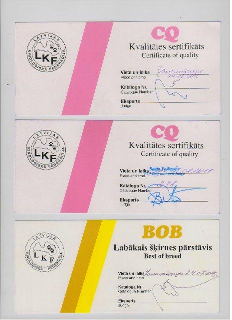 Lubomir Pobeditel Tsarskaya Staya кобель возраст 2,5 года. Срочно!!! 66546f587b64