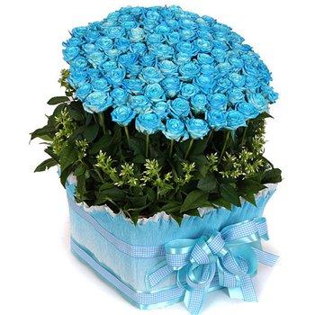 Поздравляем с Днем Рождения Валентину (миа) 11b097cc243at