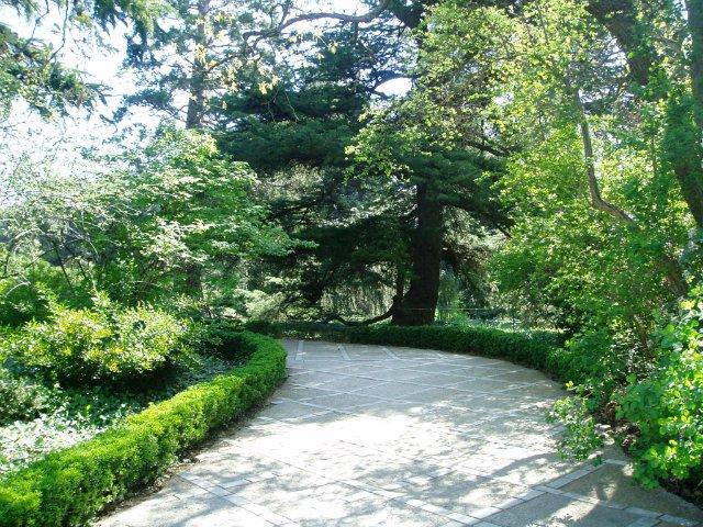 Крым. Никитский ботанический сад. 14ad5a5d42ff