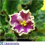 Цветение к Н. Г. (Olga-flora) 677cbb0c5679t
