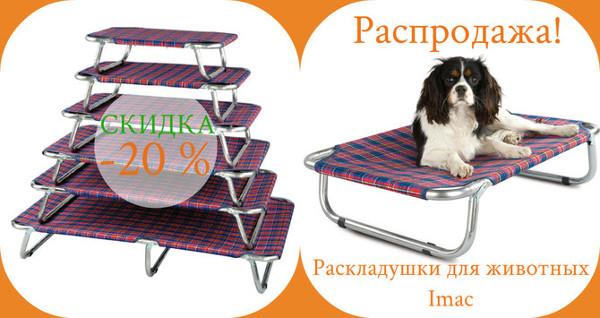 Интернет-магазин Red Dog- только качественные товары для собак! - Страница 4 73056822e501