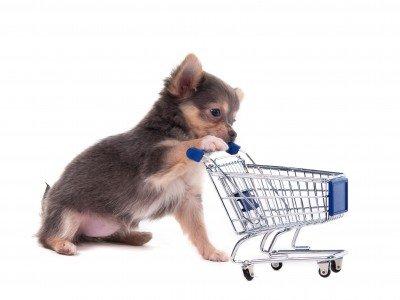 Интернет-зоомагазин Pet Gear - Страница 5 059cfdedf834