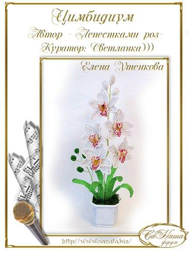 "Выпуск работ факультета ""Цимбидиум"" Acc72f0d2e81t"