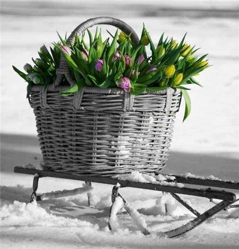Зима... Морозная и снежная, для кого-то долгожданная, а кем-то не очень любимая, но бесспорно – прекрасная.  - Страница 6 31c9208bf68f