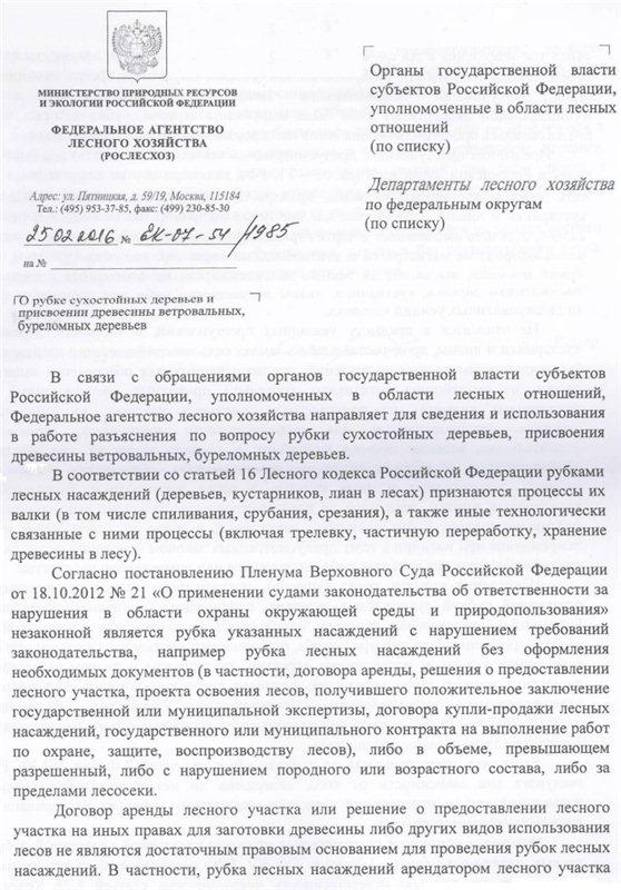 В РФ вводят уголовную ответственность за сбор дров в лесу E04035846bf7