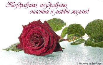 Поздравляем с Днем Рождения Елену (Ctefi) 5c1956586434t