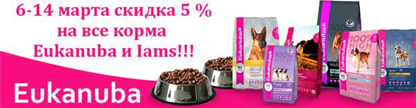 Интернет-магазин Red Dog- только качественные товары для собак! E341d59b8ff6