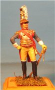 VID soldiers - Napoleonic french army sets 701f331e0c9at
