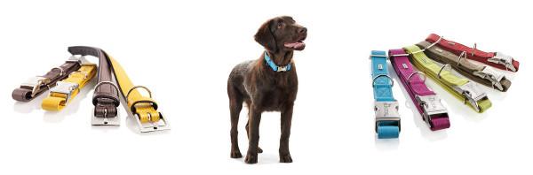 Интернет-магазин Red Dog- только качественные товары для собак! - Страница 4 0167c749b84d