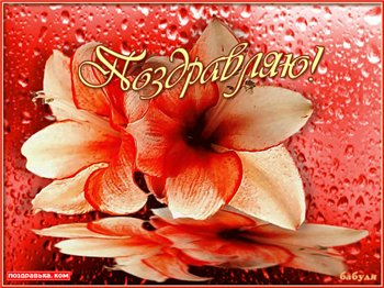 Поздравляем с Днем Рождения Галину (кала) 67b644b38928t