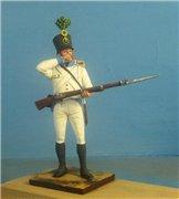 VID soldiers - Napoleonic austrian army sets 4525f94e3cb9t