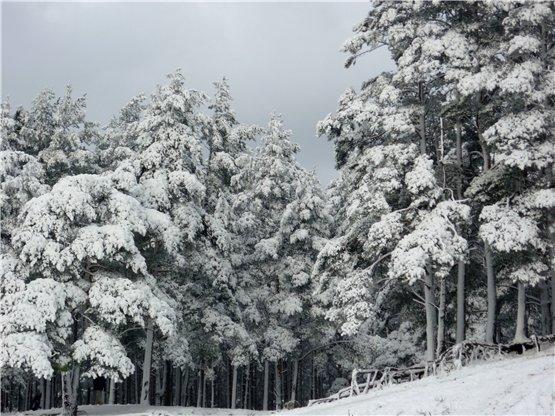 Зимняя сказка на наших фотографиях - Страница 6 5b90c863bf62