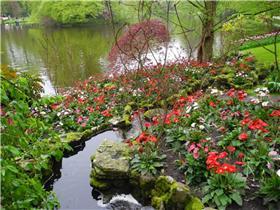 Рай тюльпанов или Кёкнхов - 2012 3ee79394d3b2t
