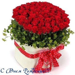 Поздравляем с Днем Рождения Татьяну (Татьяна Грязнова) 0fe8f0c6e8b3
