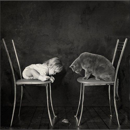Сама по себе гулёна (о кошках) - Страница 2 1b6fa4df0a91